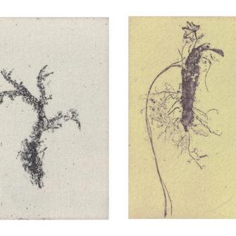 EnTillEn Natur, etsningar av Johan Frid